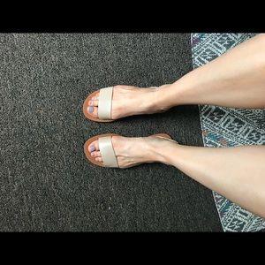 0b2ee709bdb Steve Madden Shoes - Steve Madden Alina Sandals